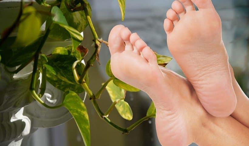 pieds doux